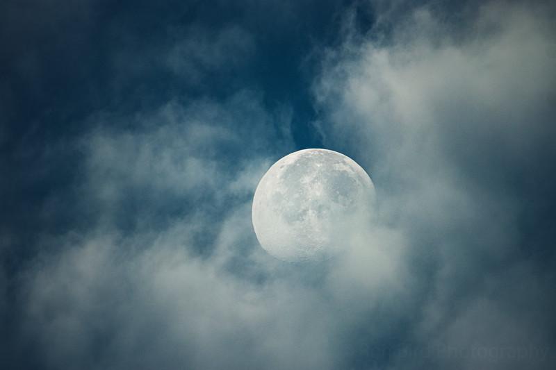 11.4.20 - Luna peeking through early this am.