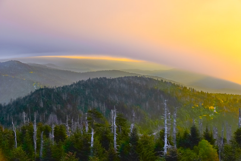 Smoky Mountains 107