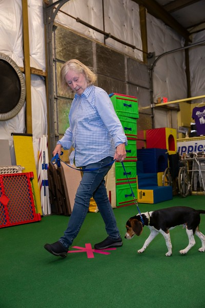 on Command dog Training June 2019-5134.jpg