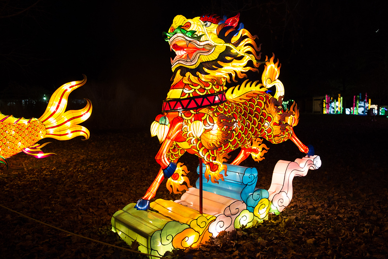 dragon lights 2018-7953.jpg