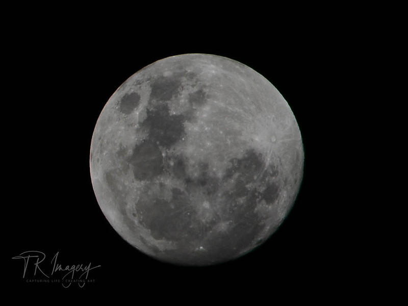 August Fullmoon -0239.jpg