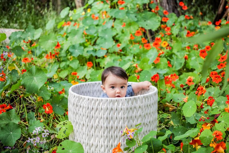 Family_photos_california_san_luis_obispo_santa_barbara_Trine_Bell_2.jpg