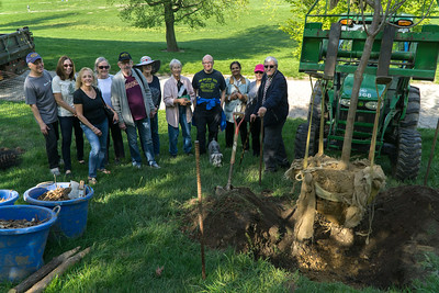 Planting A Tree In Memory Of Jane