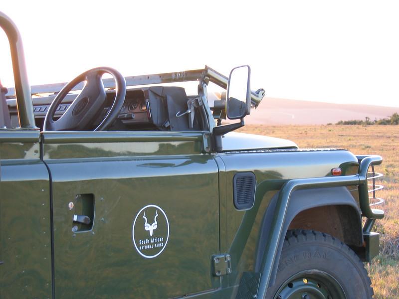 D10 on safari Addo 5.JPG