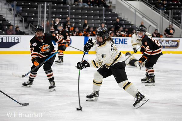 Women's Ice Hockey: Lindenwood vs RIT