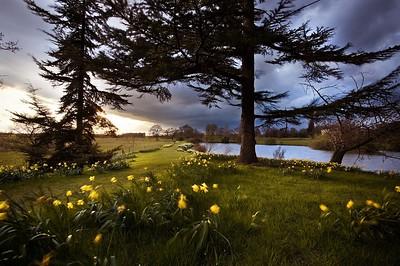 Parks, Gardens, Woodlands