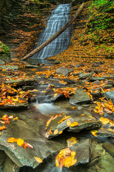 NY Waterfalls Fall 2019-12.jpg