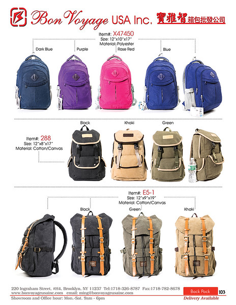 BackPack p103-X2.jpg