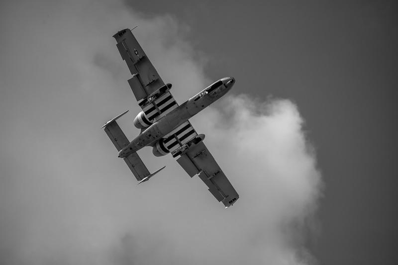 A10_ThunderboltII_Warthog-004_BW