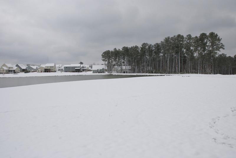 SnowFeb13-10.jpg