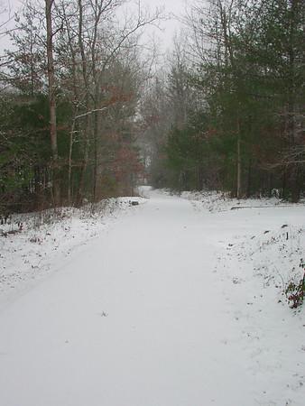 Snow 2008 January