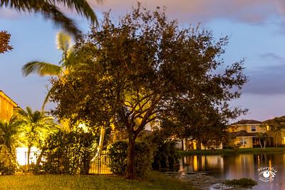 Copper Oaks Sunset