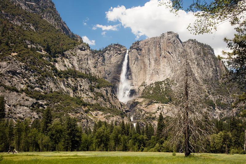 Yosemite_2016_Park-56.jpg