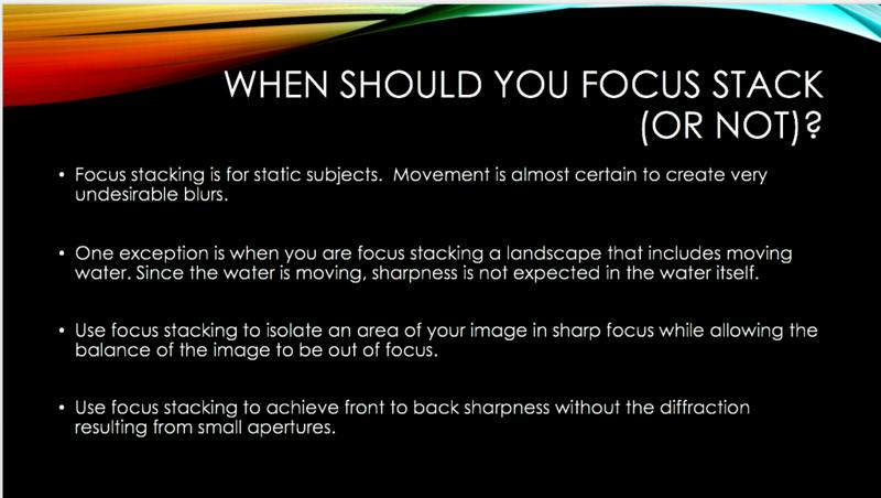 9 focus stack.jpg.png