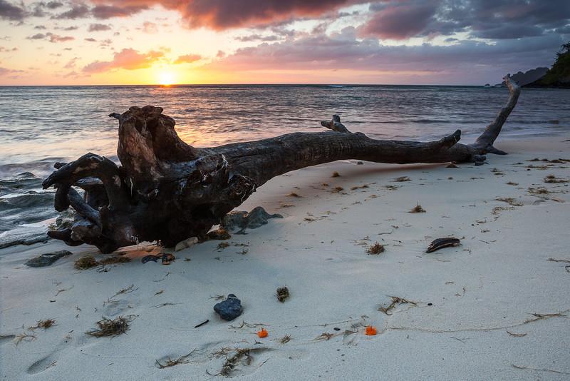 Fiji-2.jpg