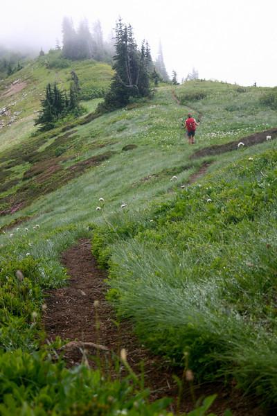 Alta ridge.