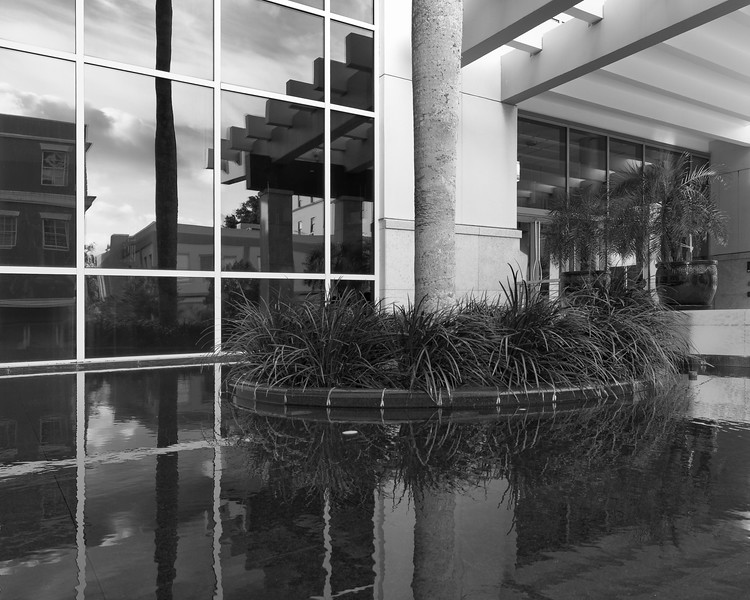 T6836 ICP W9 Reflections bw.jpg