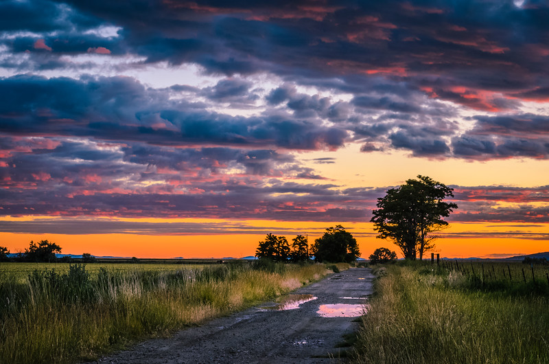 Sunset-20140618-013.jpg