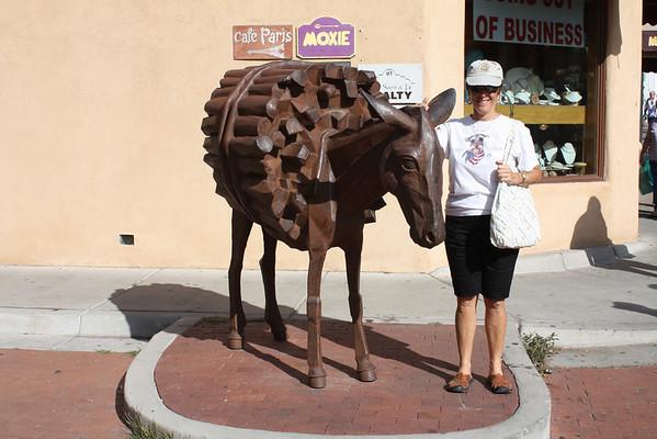 2008 New Mexico Doug's pics