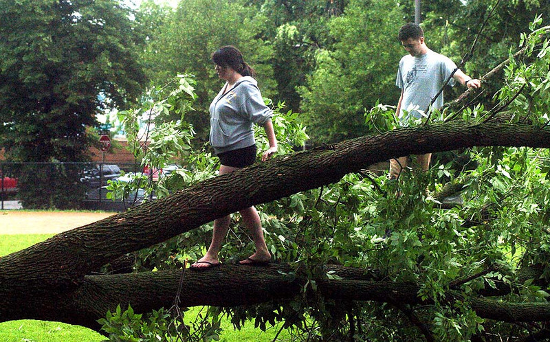 ". Friends Megan Weisenberger, left, and Alex Olson assess, according to Megan, ""the post-apoplyptic carnage\"" from a downed tree at Painter Park in Minneapolis on Saturday morning. The two were exploring the damage to the South Minneapolis neighborhood and were impressed by the \""camaraderie\"" of the residents. (Pioneer Press: Neal Lambert)"