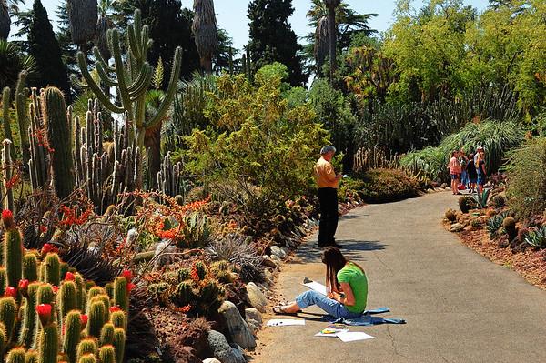 TH-Desert Garden