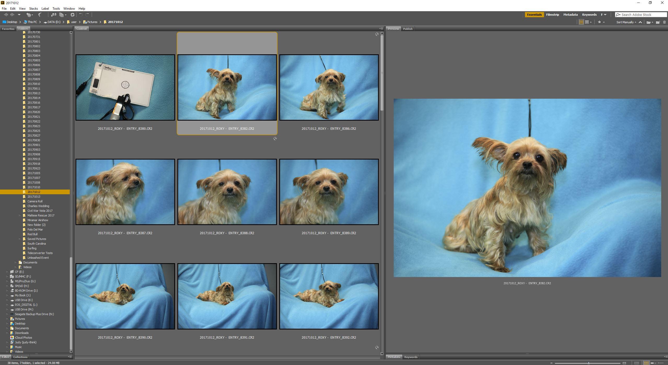 Adobe Bridge - Adobe Camera RAW Videos