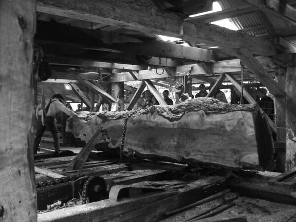 Sturgeons Mill