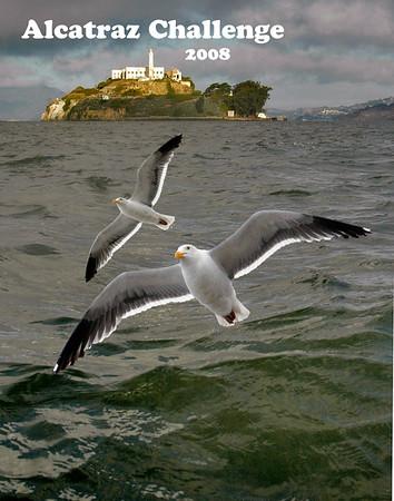 Alcatraz Challenge 2008
