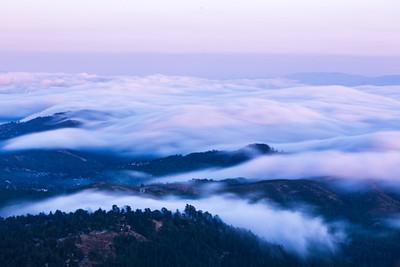 2019 - 08 Mt.Tam Fog