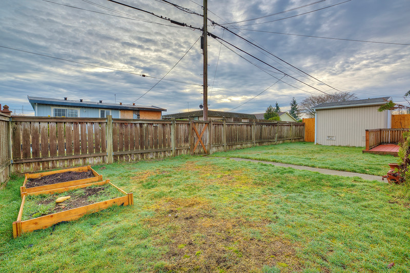backyard with shed and raised beds.jpg
