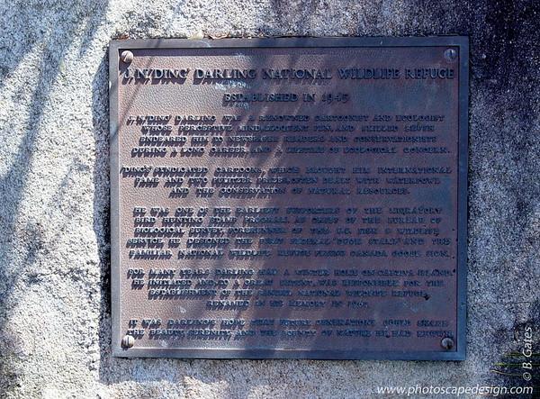 J.N. (Ding) Darling National Wildlife Refuge - Sanibel