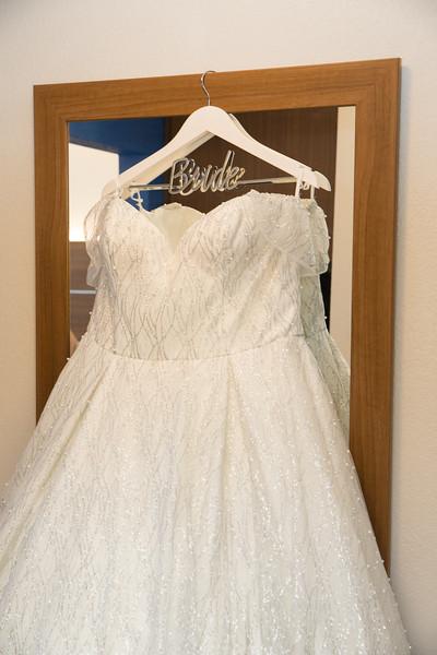 Paulette - Josh Wedding 2-22-20