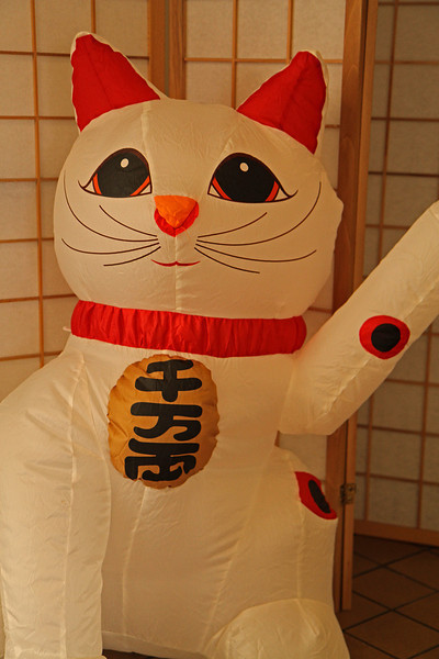 japanesecat1600.jpg
