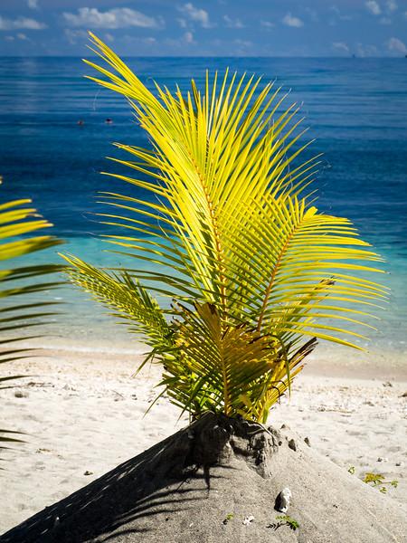 Gili Islands and Lombok