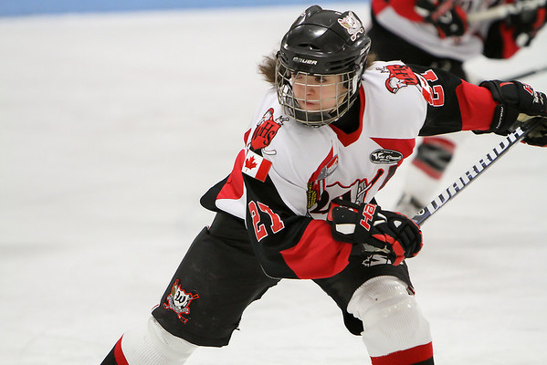 JWHL Warner Hockey School