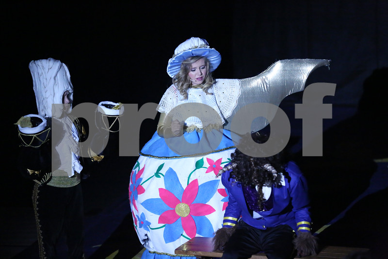 Debbie Markham Photo-Closing Performance-Beauty and the Beast-CUHS 2013-237.jpg