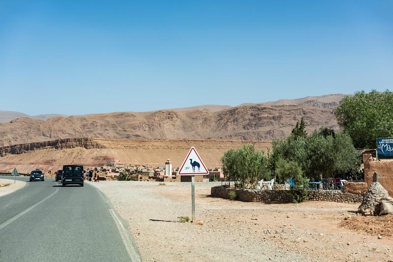 Marruecos-_MM10931.jpg