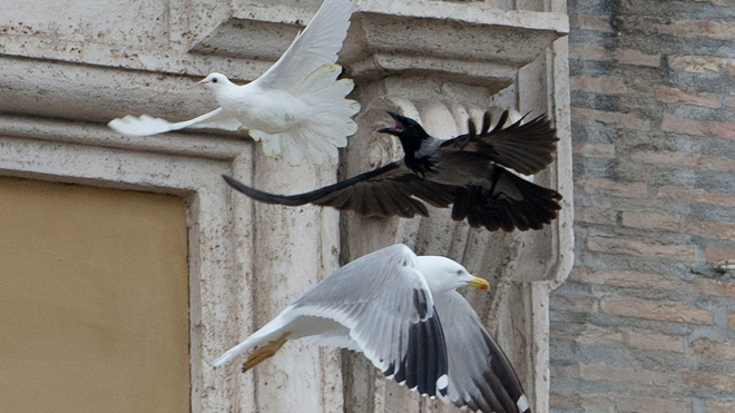 """. <p>10. (tie) DOVES <p>To some, they�re the symbol of peace. To others, a light snack. (previous ranking: unranked) <p><b><a href=\'http://www.dailymail.co.uk/news/article-2546218/Birds-released-Vatican-gesture-peace-immediately-attacked-vicious-seagull-crow.html\' target=\""""_blank\""""> HUH?</a></b> <p>    (AP Photo/Gregorio Borgia)"""
