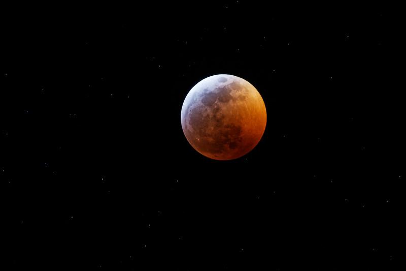 Super_Blood_Wolf_Moon1181_ID.jpg