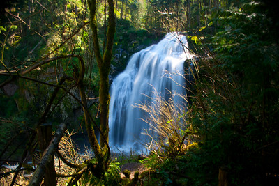 Pack Forest Waterfalls