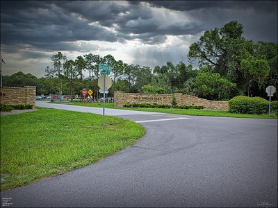 Wall Springs County Park,Palm Harbor