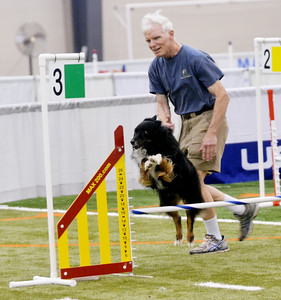 Agility Dog Show at Spire Institute June  17, 2016