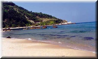 shore.jpe