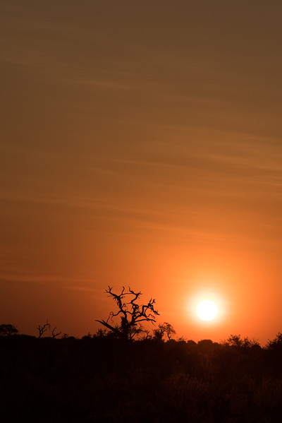 Botswana_June_2017 (5396 of 6179).jpg