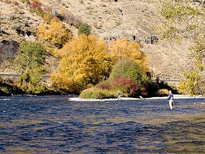 061022 Fall Yakima River Canyon Snapshots