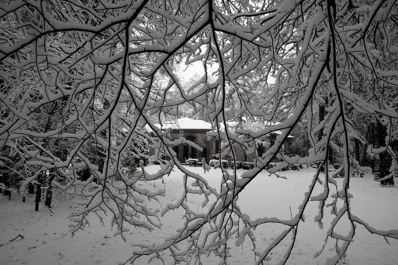 snow_o1_2018_023.jpg