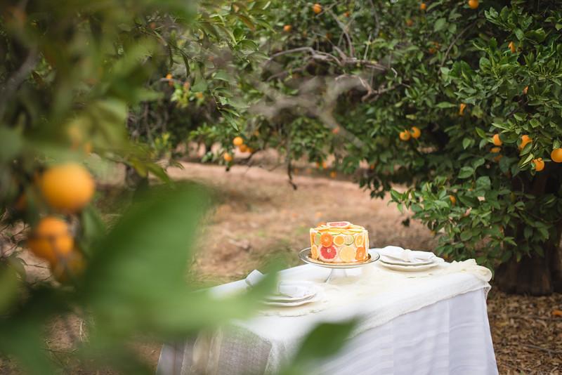Citrus Styled Shoot (22 of 120).jpg