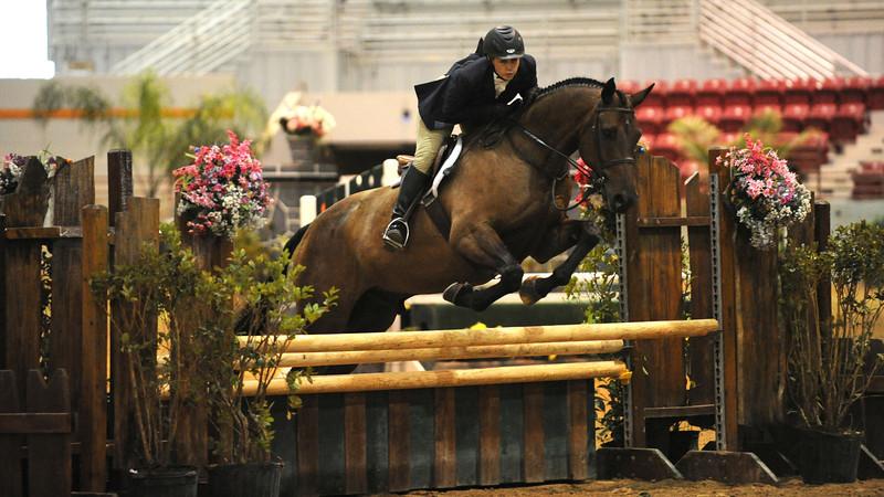 Horse show (19).jpg
