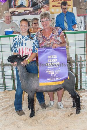 July 18 Livestock Sale