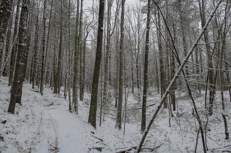 Ridgeline Trail -- 2,580'